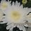 Thumbnail: Хризантема одноголовая Minka white (о.62)