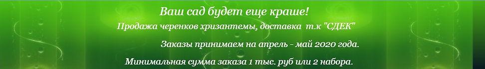 Скриншот 04-03-2020 220957.jpg