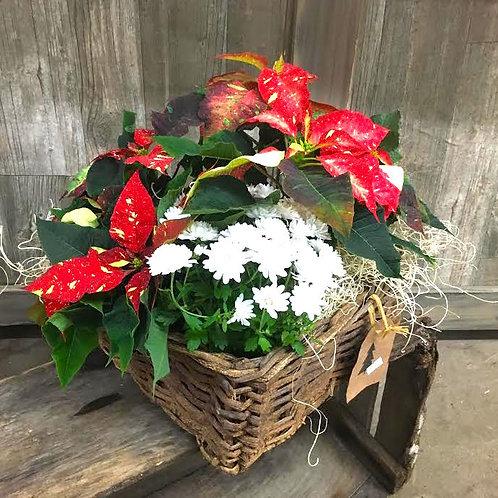 Poinsettia Holiday Basket