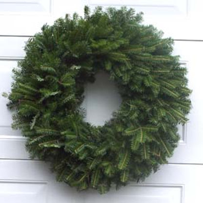 Fresh Frasier Fir Wreath 24""