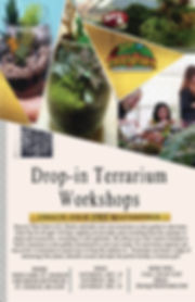 drop in terrarium workshop.jpg