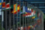 UN Flags.jpg
