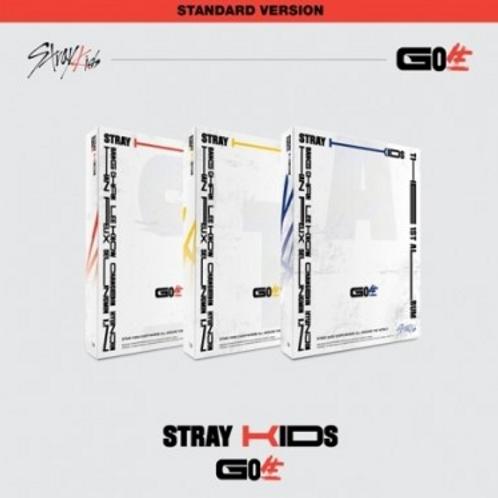 Stray Kids 1st Album - GO生 (Standard Version)