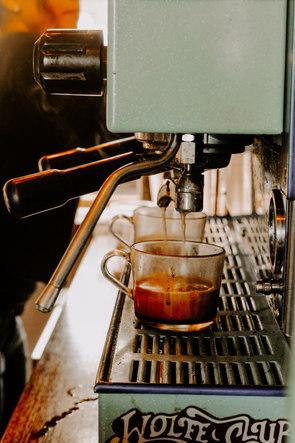 wolfe club classic espresso