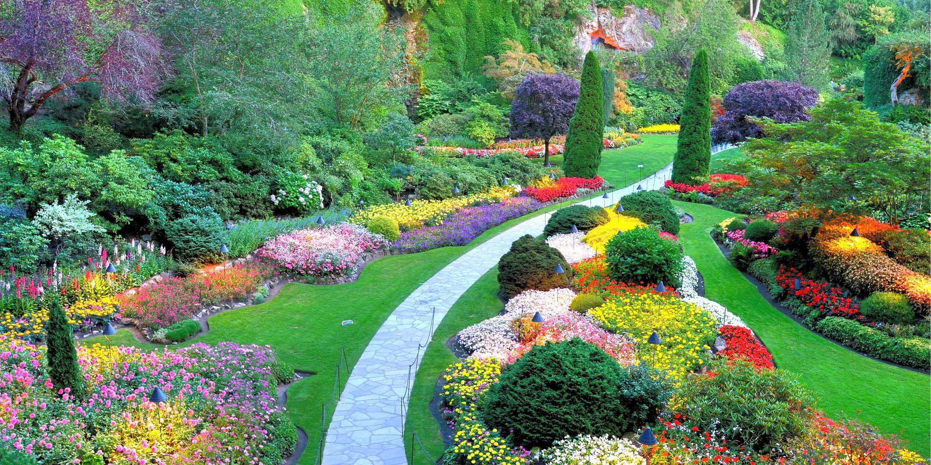 New Landscape Design and Installation