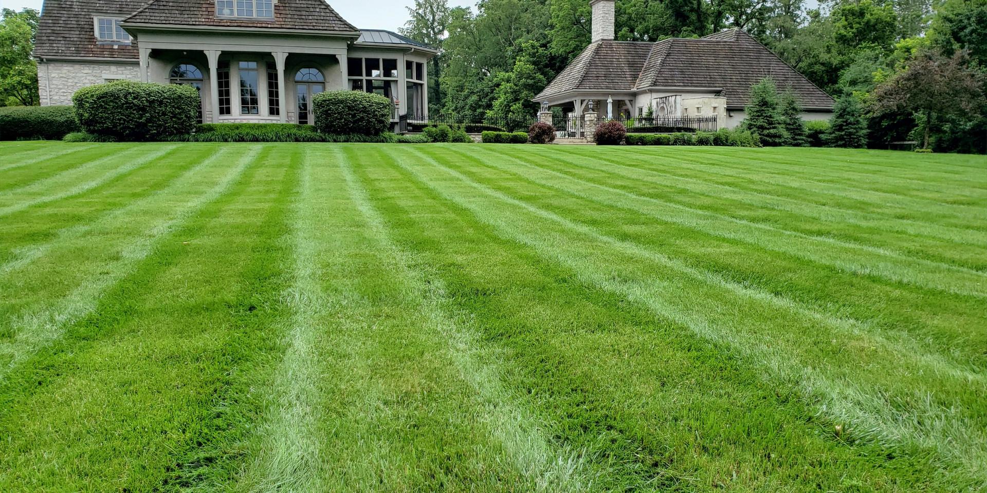 Weekly and Biweekly Cuts and Maintenance