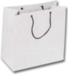 Sacolas De papel Ecologicas C04.jpg