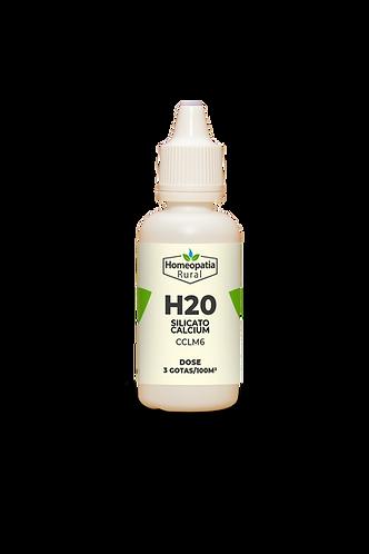 H20 - SILICATO CALCIUM