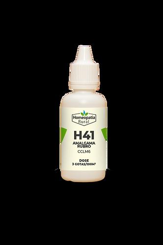 H41 - AMALGAMA RUBRO