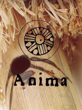 Show Espelho – Grupo Anima