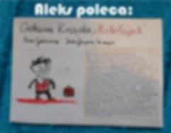 ALEKS książka.jpg
