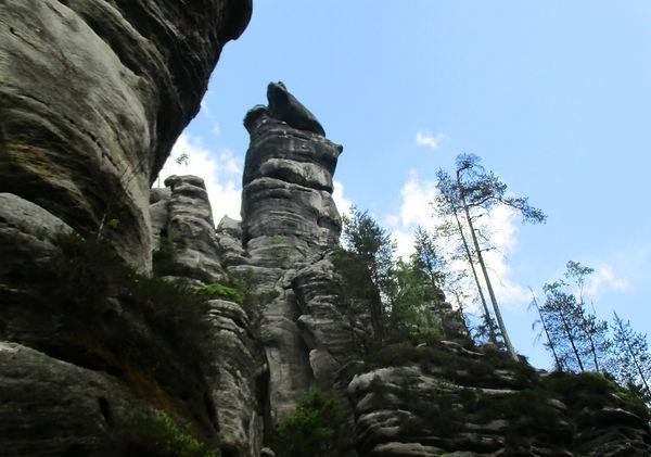 Der EISBÄR (Wekelsdorfer Felsen) CZ