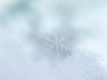 Winter Non-Emergency Program