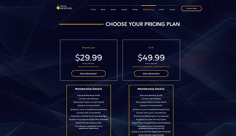 773Designs Website Case Study - True Mentors Pricing Page