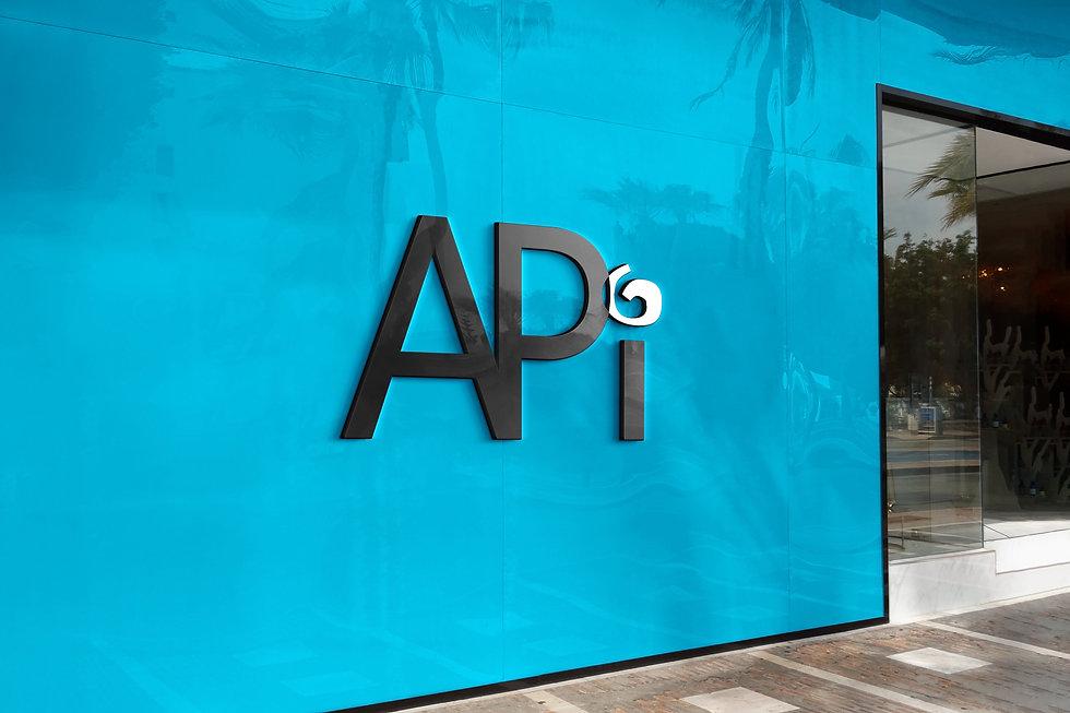 API2.jpg