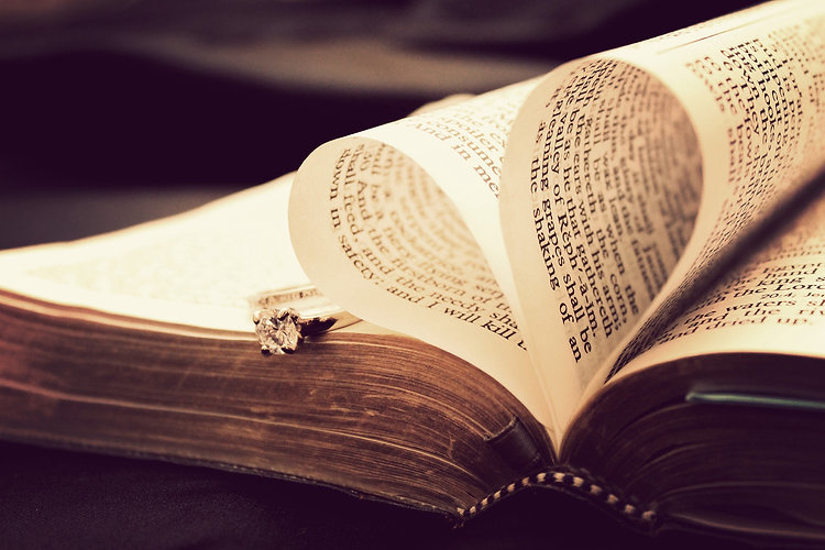 bible_t20_PQQx3N.jpg