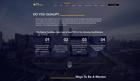 773Designs Website Case Study - True Mentors Mentor Qualification Page