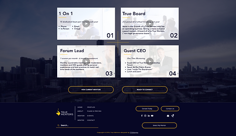 773Designs Website Case Study - True Mentors Mentor Options Page