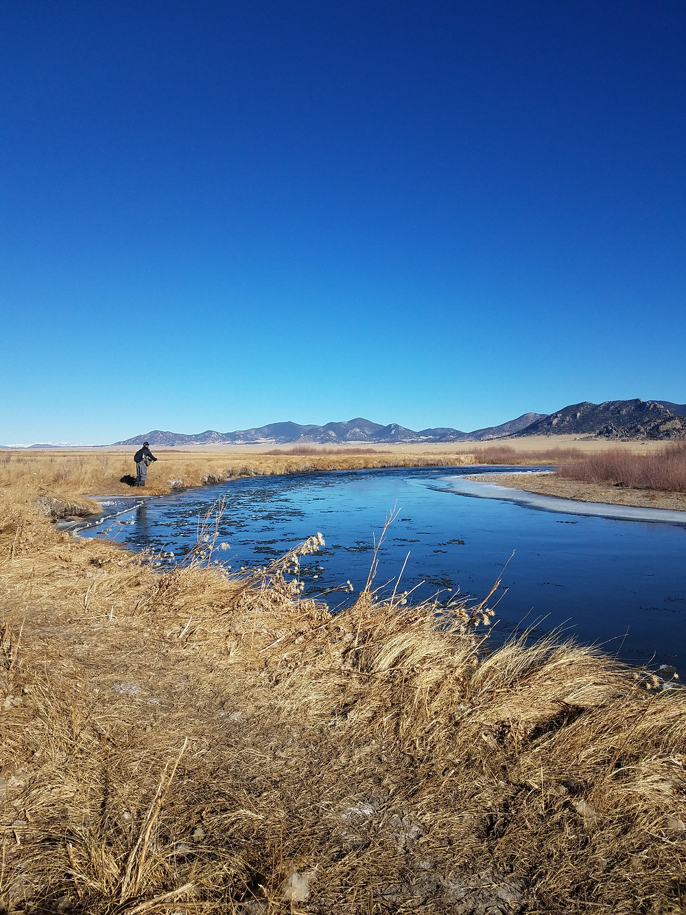 Dream Stream South platte Colorado fly fishing