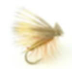Screen Shot 2020-02-17 at 9.10.21 PM.png