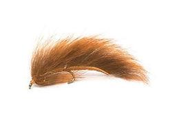 squirrel leech.JPG
