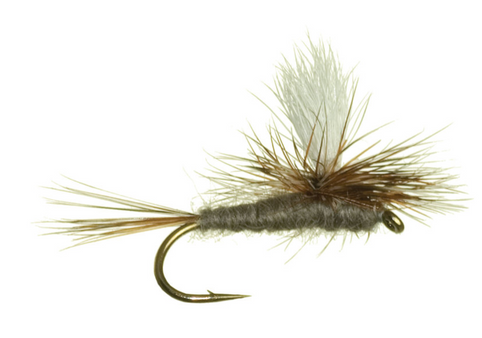 Top Flies For Summer Fly Fishing