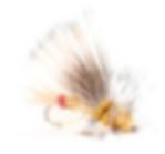 Screen Shot 2020-02-17 at 9.22.55 PM.png