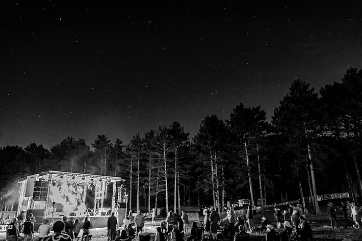 Campout in The Pines at night