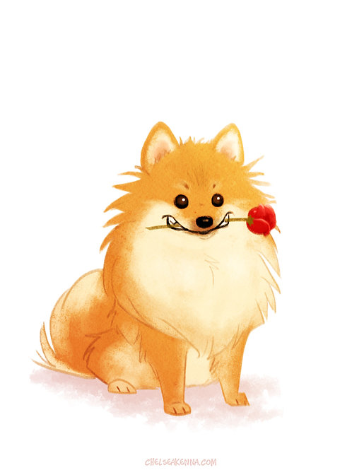 Charming Pomeranian Signed Print