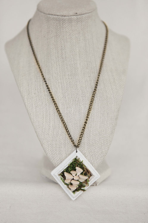 Oyster Mushroom & Picture Frame Necklace