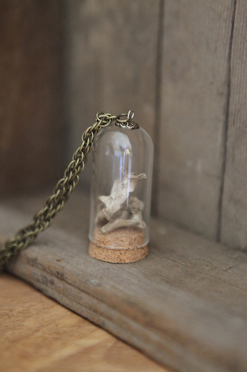 Raccoon Vertebrae in Glass dome Necklace
