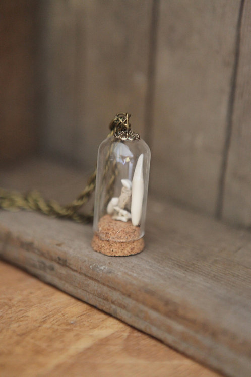 Raccoon Teeth in Glass Dome Necklace