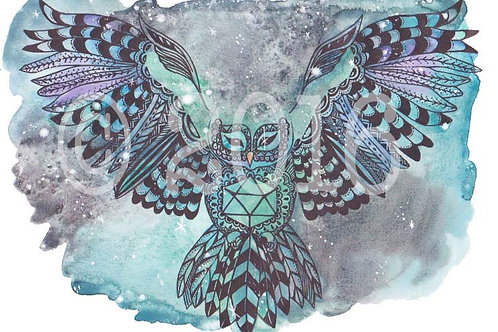 Night Sky Owl Art Print