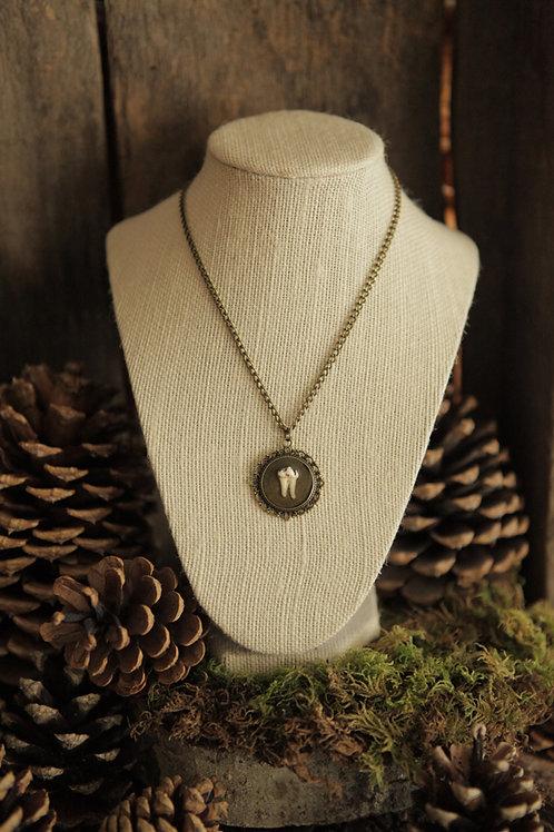 Deer Tooth Pendant Necklace