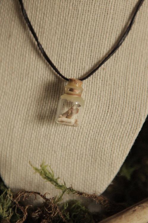 Raccoon Bones in a Bottle Necklace