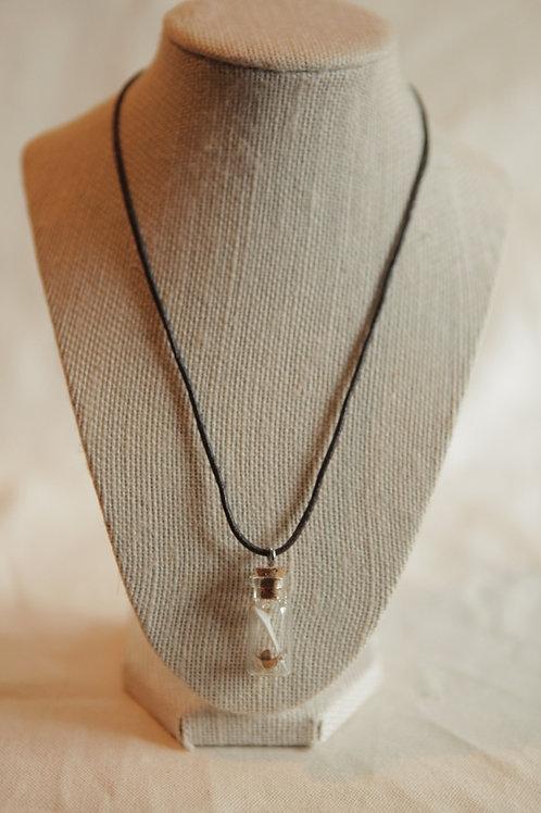 Squirrel Bone in Vial Necklace