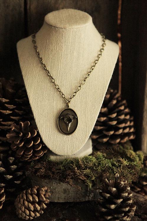 Raccon Vertebrae Pendant Necklace