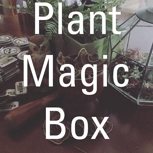 Plant Magic Box
