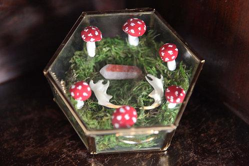Glass Display Box with Bones