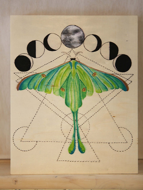 Luna Moth Art Print on Wood Canvas