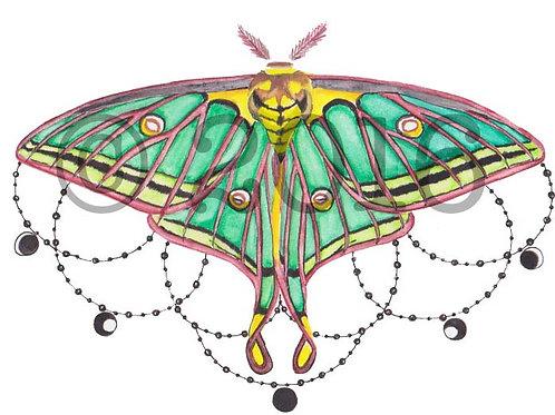 Spanish Moon Moth Art Print