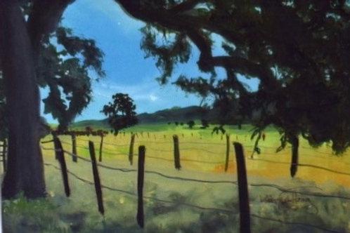 Cuyama Valley By Ruth Ellen Hoag