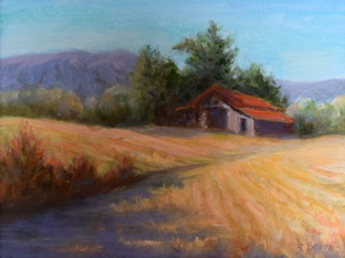 Old Barn By Sherry Bevan