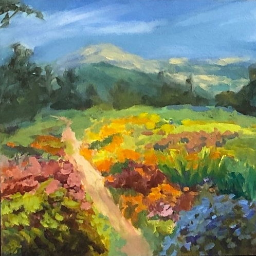 Meadow Path By Ellie Freudenstein