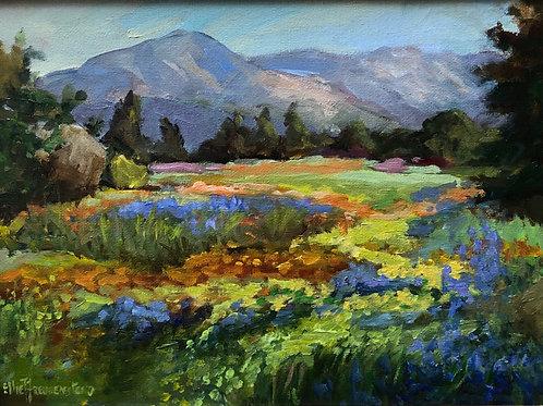 Meandering Meadow By Ellie Freudenstein