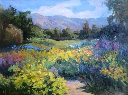 June Meadow by Ellie Freudensten
