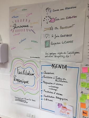 Formation_facilitation_pedagogique.JPG