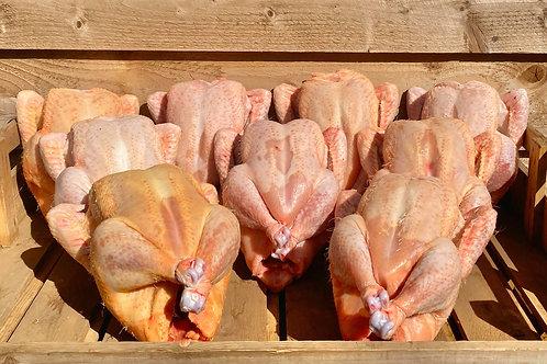 Free Range Corn Fed Whole Chicken