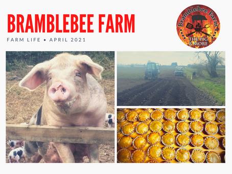 Life on the farm - April 2021