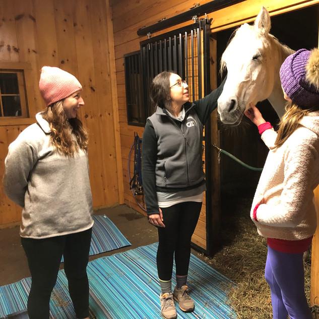 YogaInWaves yoga with horses